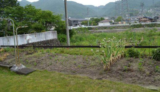 庭と畑写真
