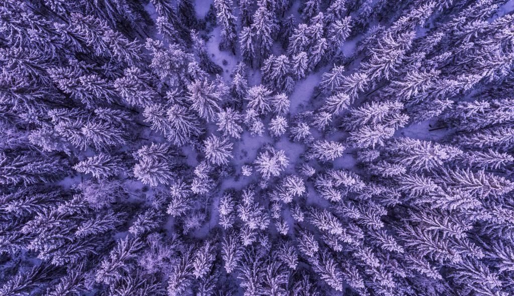 雪のある暮らし画像