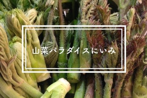 新見山菜パラダイス