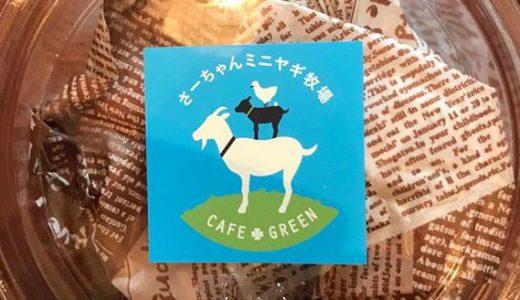 乳用山羊で6次産業化に挑戦!新見のまちの小さな牧場 ♪さーちゃんミニヤギ牧場