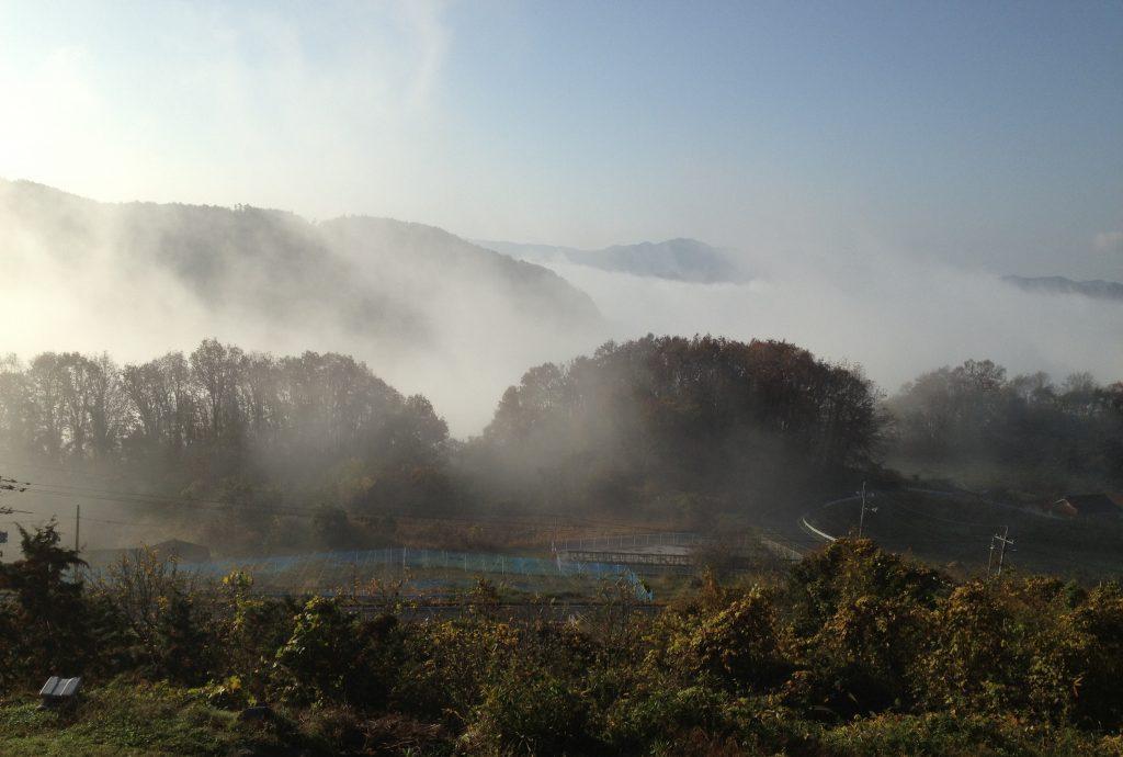 雲の上のぶどう園