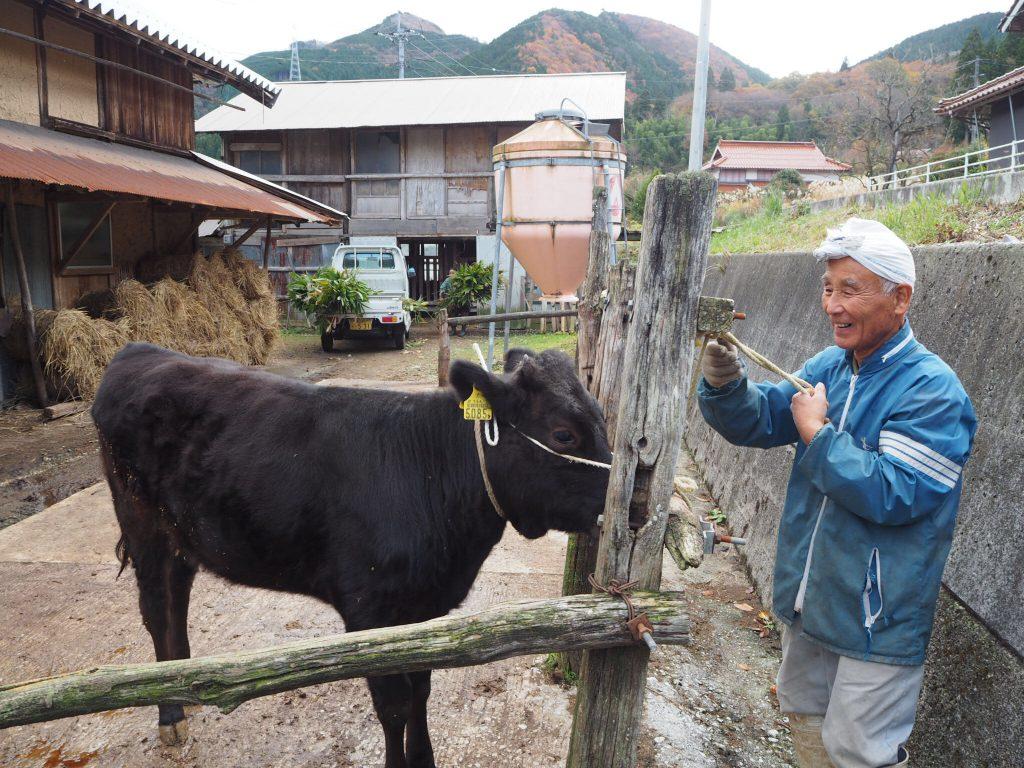 竹の谷蔓牛牛飼いの平田さん