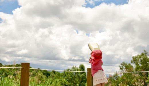田舎で過ごす夏休みの5つのメリット