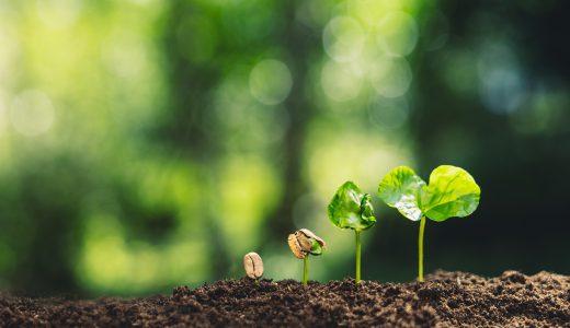 ニミログライターが感じる農業 〜注目のトピックは「スマート農業」と「小さな農業」〜