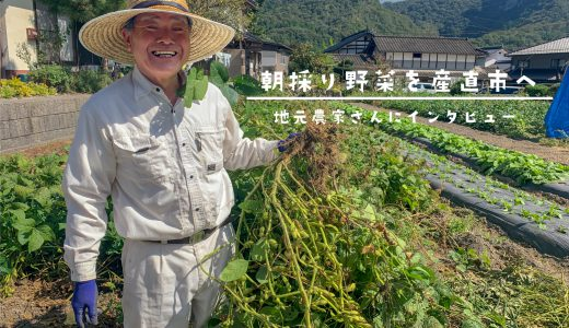 朝採り野菜を直売所へ! 地元農家さんへインタビュー