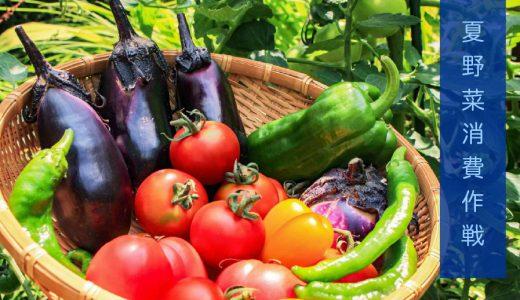 夏野菜が豊作!食べきれない時どうする? 〜干し野菜を作ってみた〜